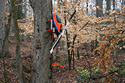 RC helicopters mounted on tree using landing skid clip clamp